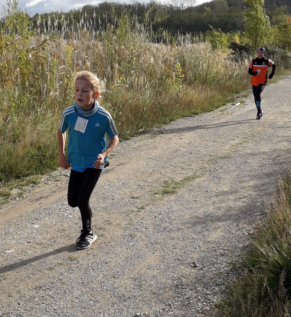 Geiseltalsee-Lauf
